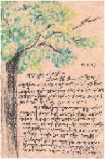 chhotomashima_tree